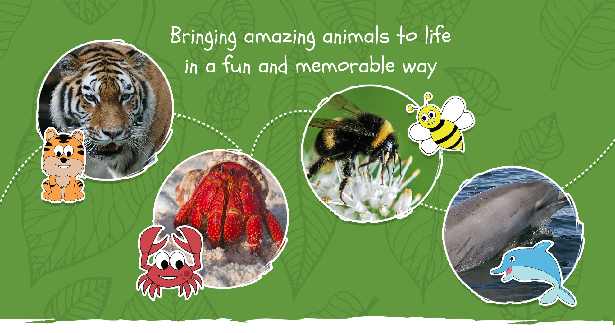 Wild Planet Explorers - Bringing amazing animals to life in a fun and memorable way
