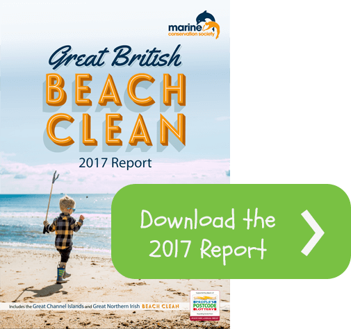 beach-clean-report