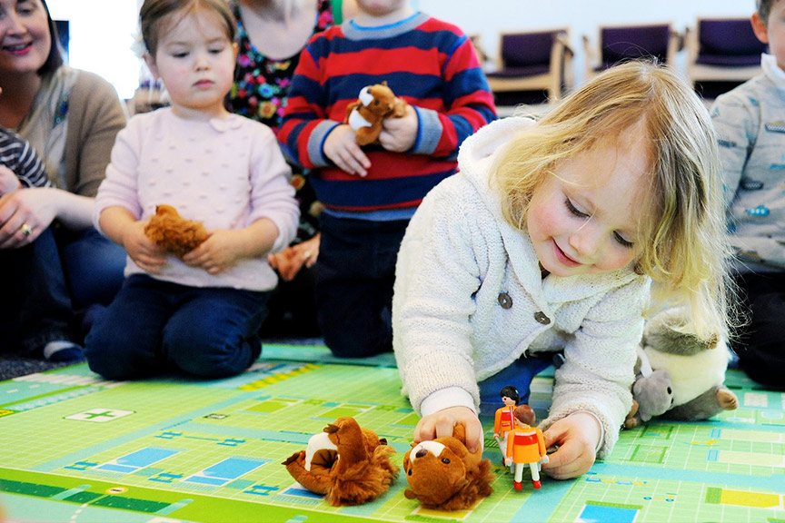 Find out about our animal sessions